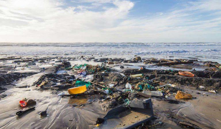 Çevre Kirliliği Nedir? Çevre Kirliliği Çeşitleri Nelerdir?